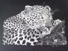 Leopard Scratch Art
