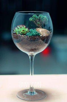 teraryum fikirleri #Glassgarden