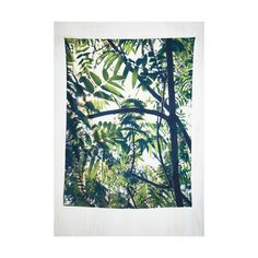 Dorm Decor The Great Indoors Tapestry ($35) ❤ liked on Polyvore featuring home, home decor, wall art, backgrounds, filler, green, home accessory, wall decor, green wall art and woven wall hanging