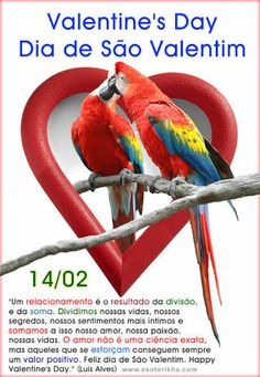 Photo about A couple of kissing parrots with a heart-shaped frame as background. Image of affection, natural, feather - 3074644 Graphic Design Layouts, Modern Graphic Design, Heart Shaped Frame, Bird Poster, Love Birds, Happy Valentines Day, Geek Stuff, Stock Photos, Couple Kissing