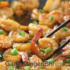 Garlicky ginger shrimp stir fried in soy sauce and green onion. This quick 15 minute meal is both flavorful and easy to make. Garlicky ginger shrimp stir fried in soy sauce and green onion. This quick 15 minute meal is both flavorful and easy to make. Shrimp Recipes Easy, Fish Recipes, Seafood Recipes, Asian Recipes, Cooking Recipes, Healthy Recipes, Chinese Shrimp Recipes, Cheap Recipes, Appetizer Recipes