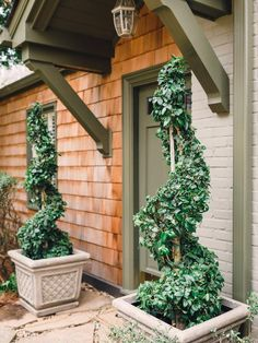 I gave visual appeal to the entry by framing the front door with tall greenery. This is especially effective for single story homes since the height and shape of the trees immediately draws the eye upward and make the entry seem grander-->http://hg.tv/y8r7