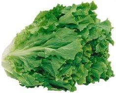 Indische Andijvie Van Riet recept | Smulweb.nl Lettuce, Food Styling, Real Food Recipes, Vegetables, Health, Health Care, Veggies, Vegetable Recipes, Salud