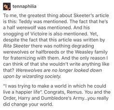 Wizarding world werewolf mudblood Muggleborn pureblood Remus Lupin moony marauders teddy Lupin Nymphadora tonks teddy tonks andromeda tonks Harry Potter Hogwarts Rita skeeter the daily prophet