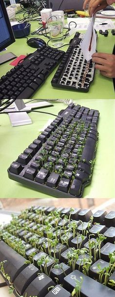 Ideas : Green Keyboard  now this was a serious pin, my question is WHY would you want to do this at all?
