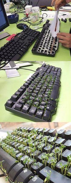 Ideas : Green Keyboard