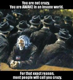 You are not crazy. You are awake in an insane world. For the exact reason most people will call you crazy. #awake #lookatallthesheeple #voluntaryist