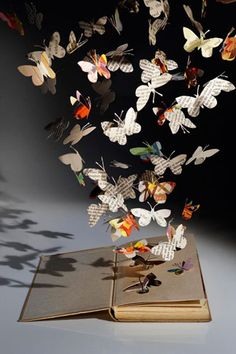 visions of butterflies danced above my head !