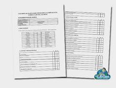 MALETÍN DEL PROFE | Registro de competencia curricular ~ La Eduteca
