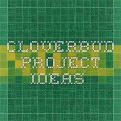 Cloverbud Project ideas