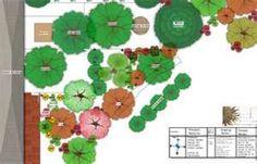 Designing a forest garden