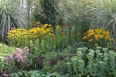 *Garten-Liebe* Plants