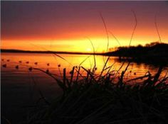 Part of the obsession. It's amazing how beautiful it is in person Waterfowl Hunting, Duck Hunting, Hunting Wallpaper, Country Life, Country Style, Background S, Beach House Decor, Beautiful Sunset, Sunrise