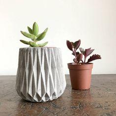 Concrete Mini Planter With Succulent