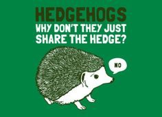Fancy a t-shirt that asks the important questions? Questions like: Hedgehogs - Why don't they just share the hedge?