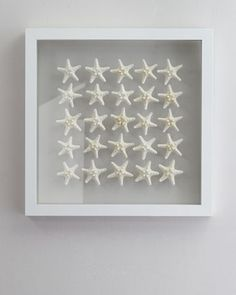 """""""Knobby Starfish"""" Wall Decor by Karen Robertson Collection - Coastally inspired wall decor features 25 knobby starfish suspended between clear glass"""