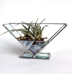 Table Top Stained Glass Beveled Air Plant Holder Terrarium – Stained Glass Décor    Designed and handmade by me. This is absolutely stunning! Display