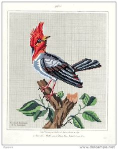 (1) Gallery.ru / Фото #154 - ретро - lilu34 Cross Stitch Bird, Cross Stitch Charts, Cross Stitch Embroidery, Cross Stitch Patterns, Embroidery Patterns Free, Vintage Embroidery, Beading Patterns, Victorian Pattern, Embroidered Bird