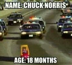 #ChuckNorris Age: 18 months #ChuckNorrisTuesday