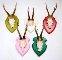 Vintage Roe Deer antlers mounted on olive green shield