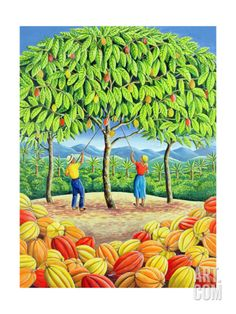 Cocoa Tree, 1993 (acrylic on paper) by Liz Wright on The Bazaar