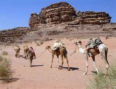Resultados de la búsqueda de imágenes: Belenes+caravanas+camellos+fotos - Yahoo Search