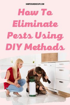 Learn How To Eliminate Pests Using Do-it-Yourself Methods. DIY Pest Control, DIY Ants Control Get Rid Of Aphids, Gentle Sleep Training, Diy Pest Control, Hiding Spots, Inexpensive Home Decor, Household Chores, Baby Led Weaning, Hampers, Ants