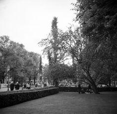 31-5-2014_Helsinki_Kiev-60TTL-Volna_Shanghai_026 Helsinki, Film Photography, Shanghai, Finland, Explore, Black And White, Outdoor, Outdoors, Black N White