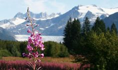 List of 20 towns in Alaska and what to do there.  Also contains some combo travel deals.