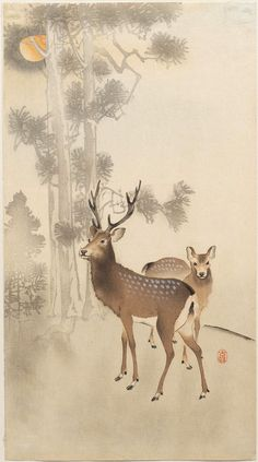 Japanese Art Print - Deer and Pine Tree in Moonlight by Ohara Koson Japanese Painting, Chinese Painting, Chinese Art, Art And Illustration, Illustrations, Kunsthistorisches Museum, Ohara Koson, Art Chinois, Rena