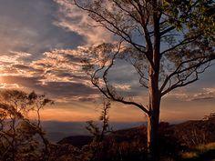 Blue Mountains - hobbsie