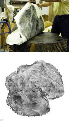 What?! A print made from an old stump!? Wow. Tree Rings.