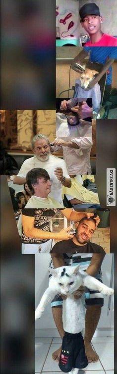 barbearia dos memes (e do lula)(e de um gato que não parece gostar do flamengo)