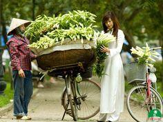 Hà Nội (Hanoi) tại Thành Phố Hà Nội