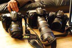 25 Sitios Web de los Mejores Fotógrafos Profesionales