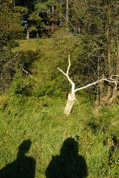 Tijdens het wandelen gebruiken we de natuur als metafoor voor dat waar je tegen aanloopt!