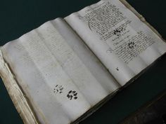 Cat paw prints in a medieval book - part of an interesting article about dirt and artifacts found in medieval books.