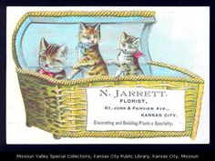 Advertising card for N. Jarrett showing two kittens and a cat in a basket.