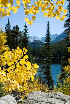 Bear Lake, Rocky Mountain National Park...I must go there in the fall to see the aspens changing colors!