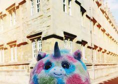 Bob in Oxford!