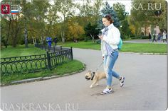 Academy Of Sciences, Dog Photos, Moscow, French Bulldog, Photo And Video, Garden, Dogs, Color, French Bulldog Shedding