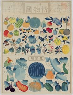 """""""Chart of Plants"""" consists of 10 illustrations: 5 of animals and 5 of plants. Multicolor paints are added on the outlines made with copper plates. Selected by Ono Motoyoshi (1838-90), (the great-grandson of the Bakufu Doctor, Ono Ranzan. He served in the Ministry of Education and worked in the field of museum). Published by the Ministry of Education in the 6th year of Meiji (1873). Painted by Hasegawa Chikuyo."""