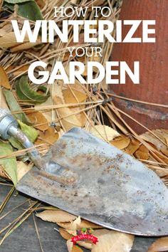 Want to keep your garden healthy over the winter? Winterize your garden beds with a few simple tips, so you'll be ready to come come spring! Use cover crops, mulch, or winter veggies to keep your garden soil healthy.