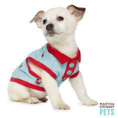 #puppy clothes by Ms. Martha Stewart