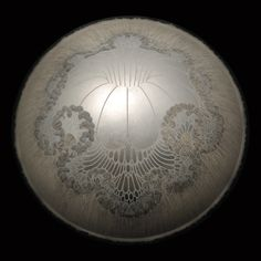 Carol Prusa, Omphalos, Silverpoint, graphite, titanium white pigment with acrylic binder on curved acrylic with aluminum leaf and fiber optics, 50 x 50 x 10″, 2011
