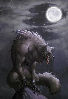 Werewolf - world-of-wolfs-and-werewolfs Photo