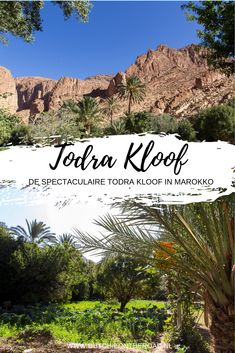De spectaculaire Todra kloof in Marokko - Dutchie on the Road The Road, Africa Travel, Marrakech, Grand Canyon, Dubai, Travel Tips, Places To Go, Mountains, World