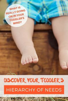 Tell a child he can't do something, and he'll want to do it for the next half an hour. Give him your full consent and he'll stop in 5 seconds. So what is REALLY going on in your toddler's mind? Click to read and discover your toddler's hierarchy of needs