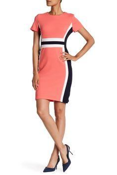 Image of Sandra Darren Colorblock Crepe Short Sleeve Dress