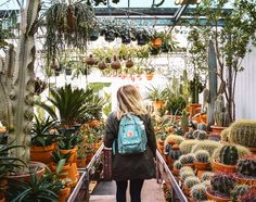 This Author & Plant Store Pro Has 6 Tips for Buying Plants You Won't Kill (Apartment Therapy Main) Buy Plants, Cool Plants, Garden Plants, Indoor Plants, Perfect Plants, Hanging Plants, Urban Agriculture, Mother Plant, Decoration Inspiration